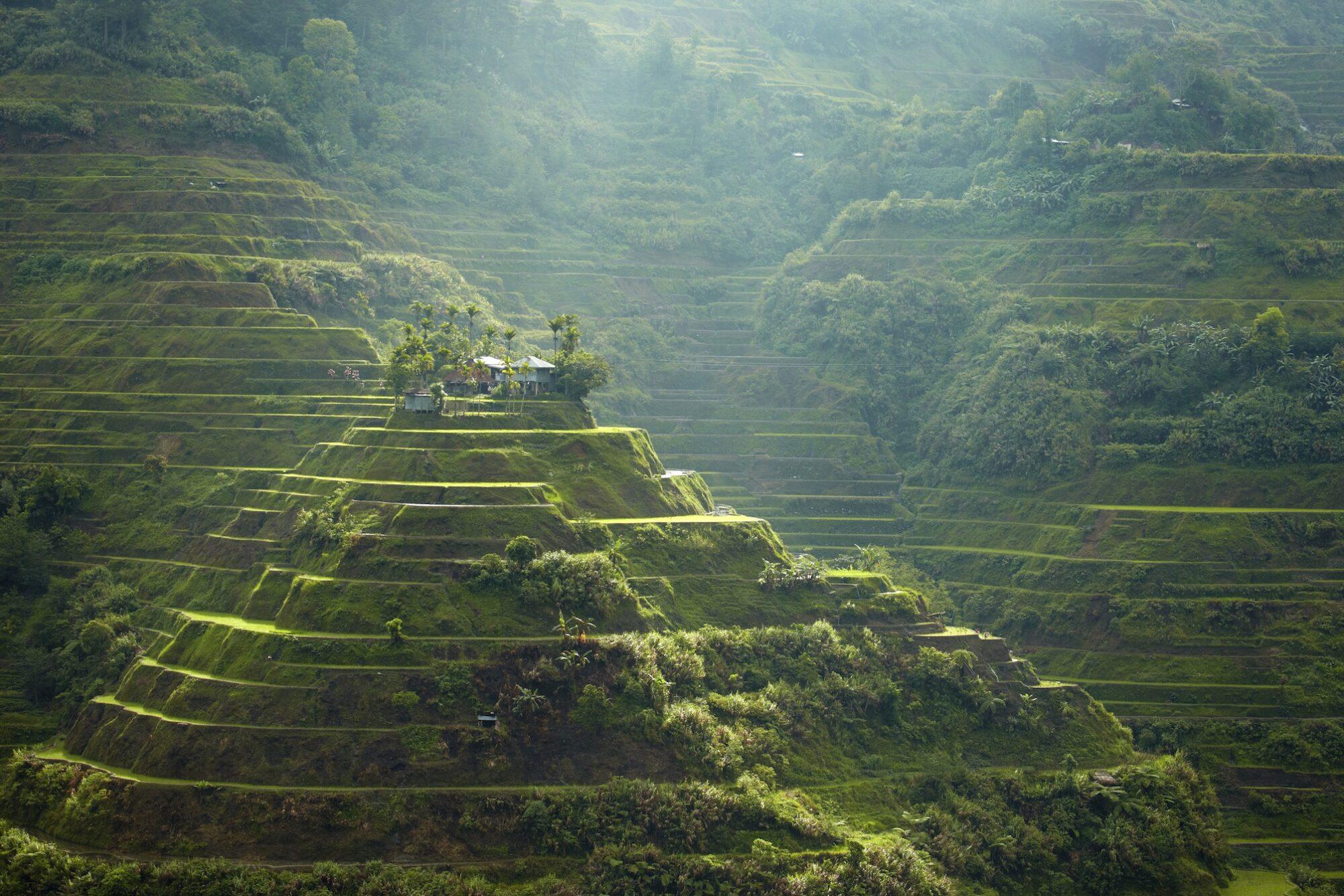 Tag på vandretur til Banaue risterrasser. Man kan også udvide turen med besøg ved Sagada og de hængende kister.