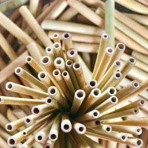 Bæredygtige bambusprodukter. Tandbørster i bambus og sugerør i bambus