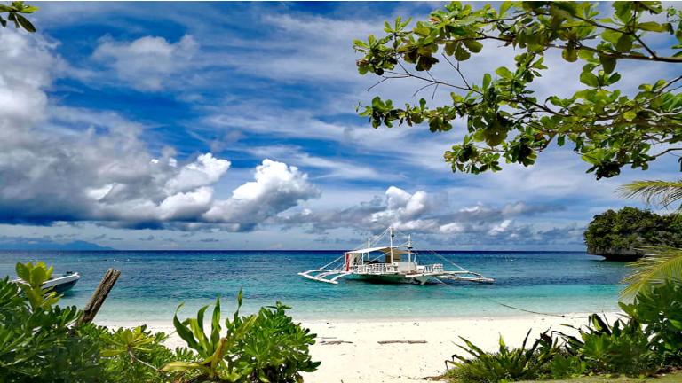 smuk udsigten over den palmebeklædte tropestrand på filippinerne