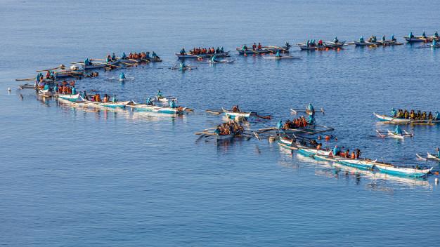 både fyldt med turister gør klar til at springe i vandet med hvalhajerne